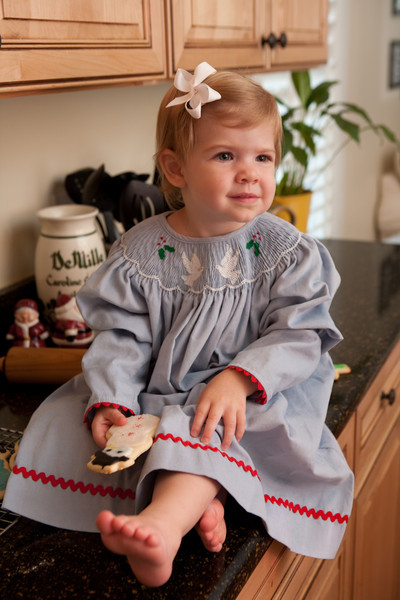 Two Turtle Doves Bishop Gown Childrens Clothing Smocked